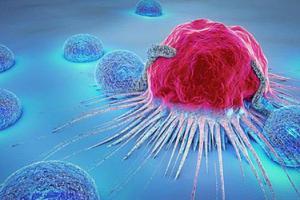 Ung thư và cách phòng tránh căn bệnh hiểm nghèo này?